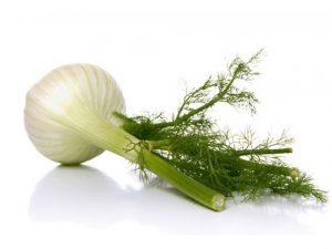 Cómo-cultivar-hinojo-300x225