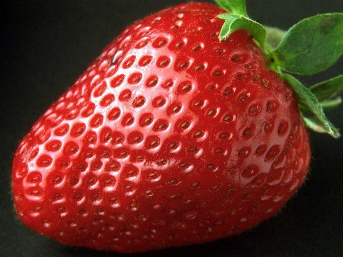 cuales son las semillas de la fresa