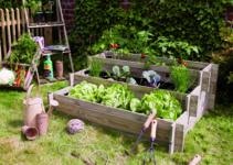 construir un huerto urbano para niños