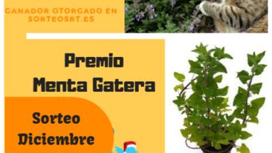 sorteo de plantas curativas bajandoalatierra.com