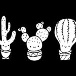 cactus divertido colorear