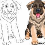 colorear perro pastor aleman