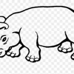 rinoceronte salvaje colorear