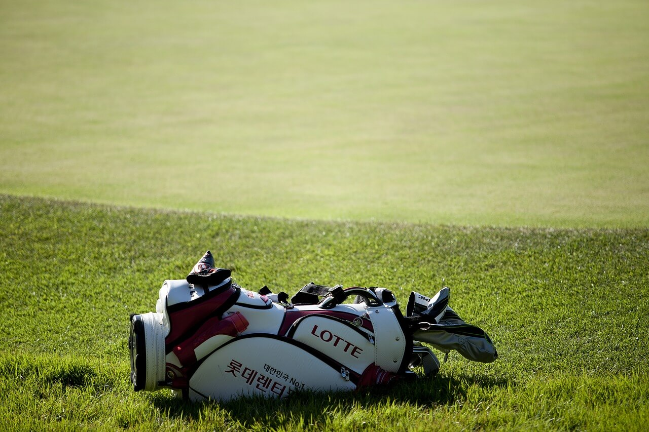 tipos de bolsas de palos de golf